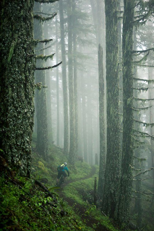 Some people don't understand mountain biking, or why we love it. Here is a glimpse into the adventure...