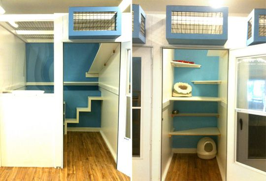 awesome kitty spaces. i dream of building spaces like these into our home. check out the little cages suspended above the doorways--how much would your cat love those?