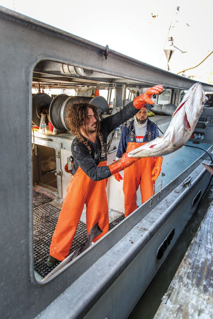 237 best houston food drink images on pinterest for Fresh fish market houston