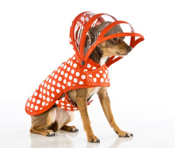 Dog Raincoat - White Polka dot on Red - Puddle Jumper on Etsy, $44.95