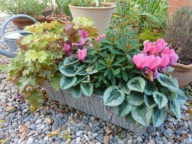 Une composition végétale pour l'automne sur le balcon