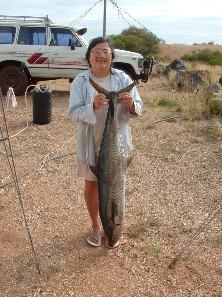 A decent sized Spanish mackerel caught near Karratha http://www.wanowandthen.com/fishing.html