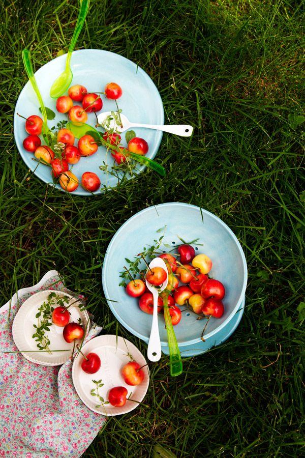 Such a happy cherry tart | La Tartine Gourmande: Rainier Cherries, Cherries Tarts, Cherries Herbs, Berries Cherries, Gluten Free, Cherries Picnics, Herbs Tarts, Happy Cherries, Tarts Recipes