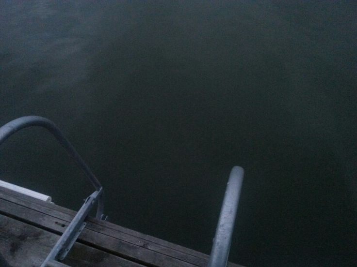 Dock and ladder