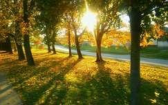 sol do outono.