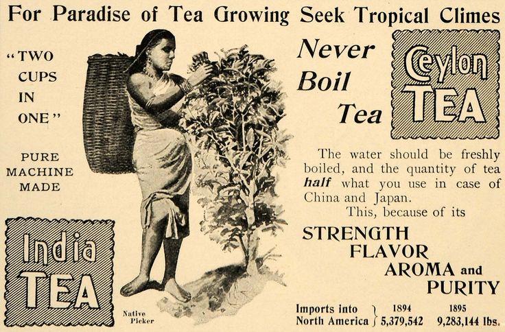 vintage tea ads | images rare by artist what s new vintage art 1896 ad ceylon tea india