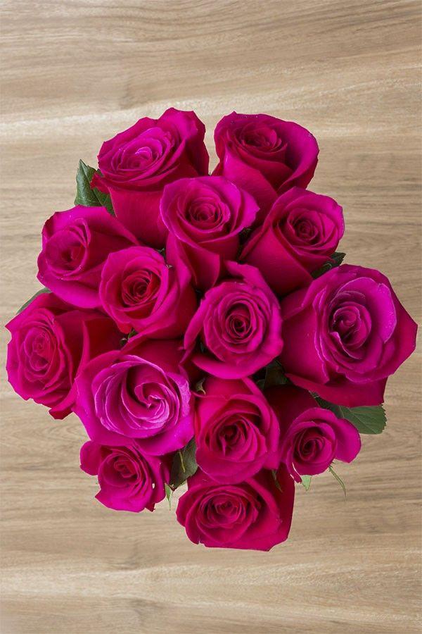 Hot Princess Pink Rose Pink Flower Arrangements Pink Rose
