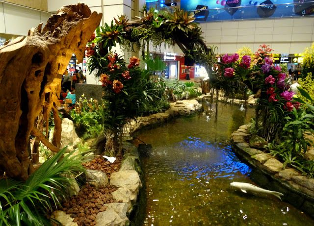 Travel and Lifestyle Diaries: Airport Experience: Singapore Changi's Gorgeous Orchid Garden