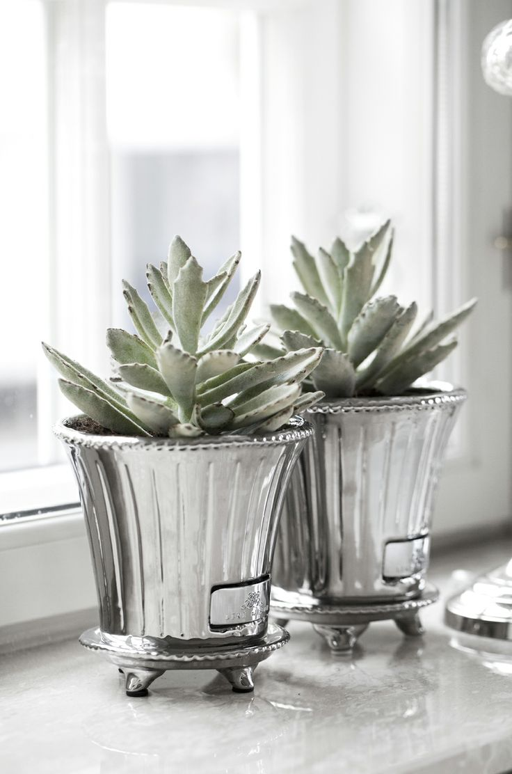 PAULINA flower pot and FLORA decoration succulent. Lene Bjerre, spring 2014.
