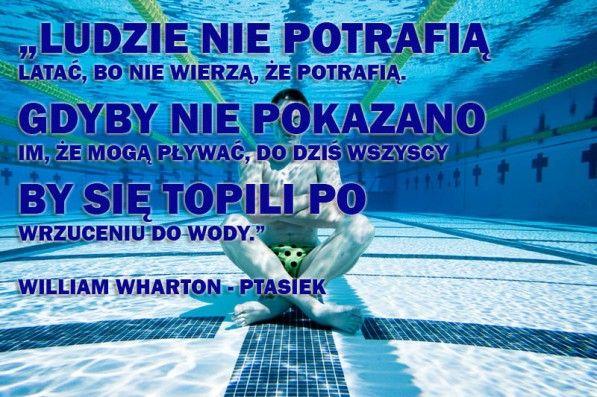 Cytaty motywujące, Swimmng Quotes, Swimmer, Pływanie, basen