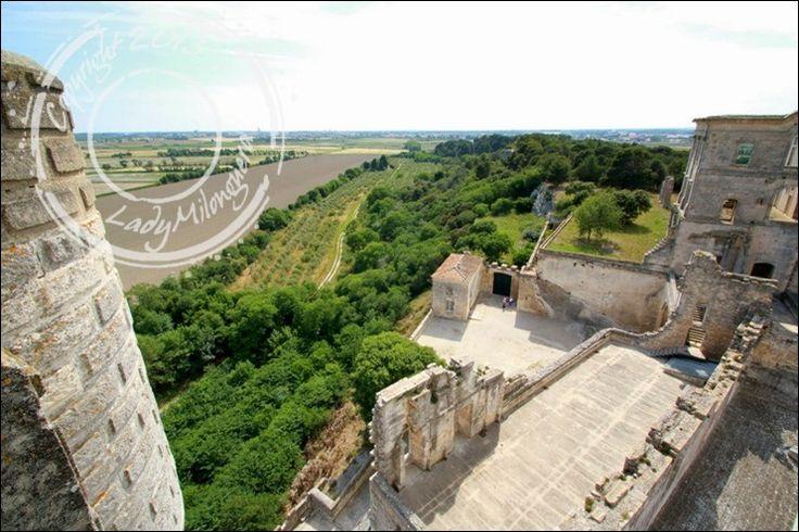 Abbaye-Montmajour-Arles (47)