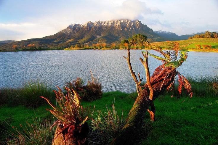 Autumn Morning - Mt Roland near Sheffield, Tasmania (2013).