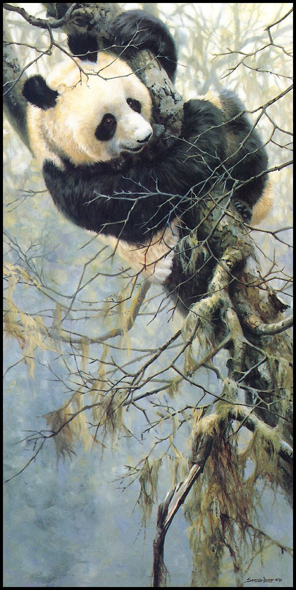 Panda on branch [LRS Animals In Art] lrsAA022 Seerey Lester John - China Song