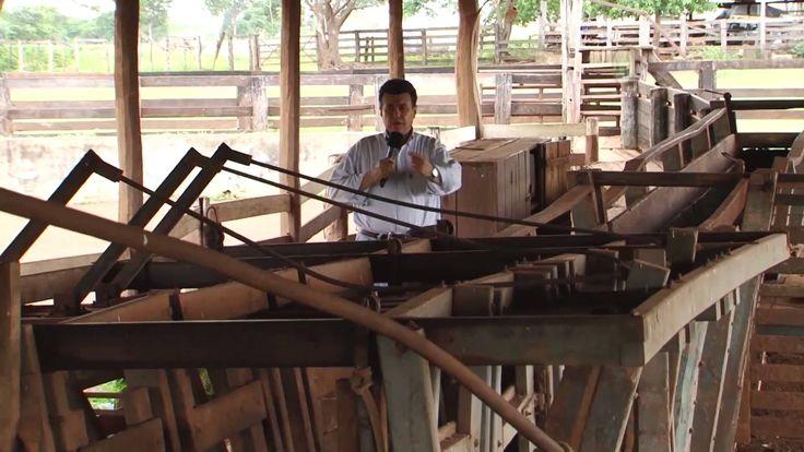 Fazenda à venda em Pedro Gomes MS com 2.000 hectares (Fazenda Destaque)
