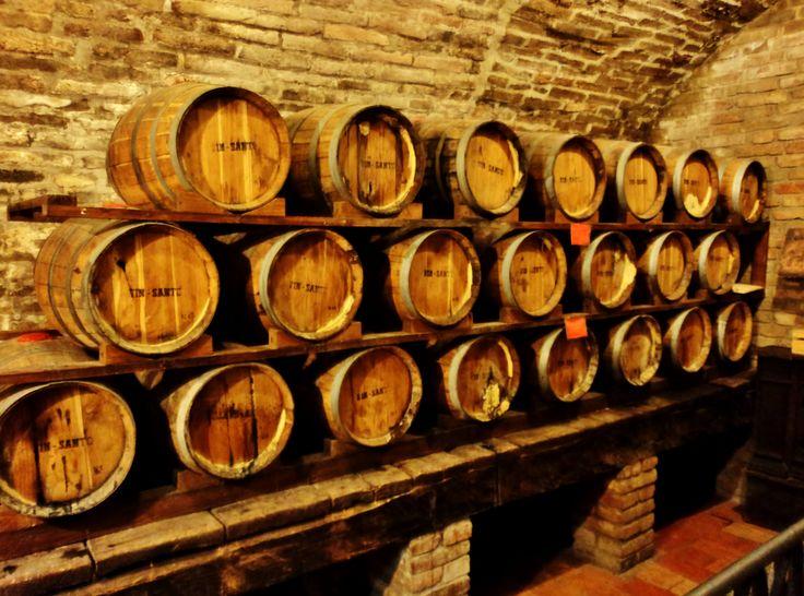 Montepulciano: in Tuscany wine tastes great!