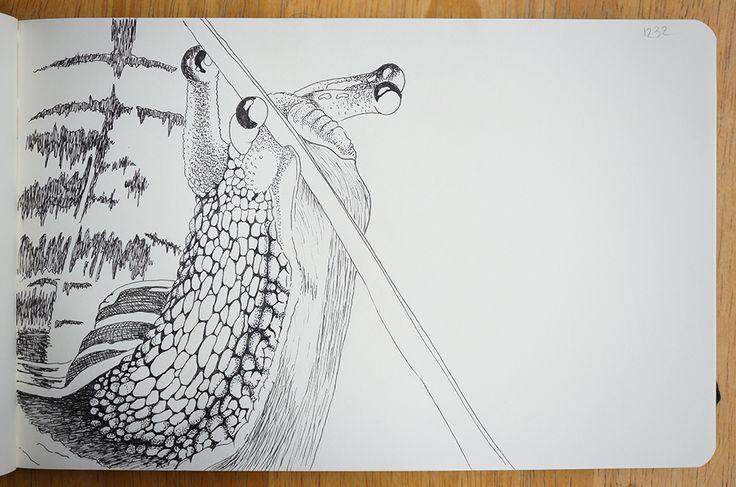 Snail - Portraits in landscape