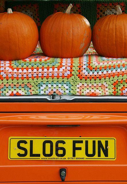 fall pumpkins and crochet blanket, via Flickr