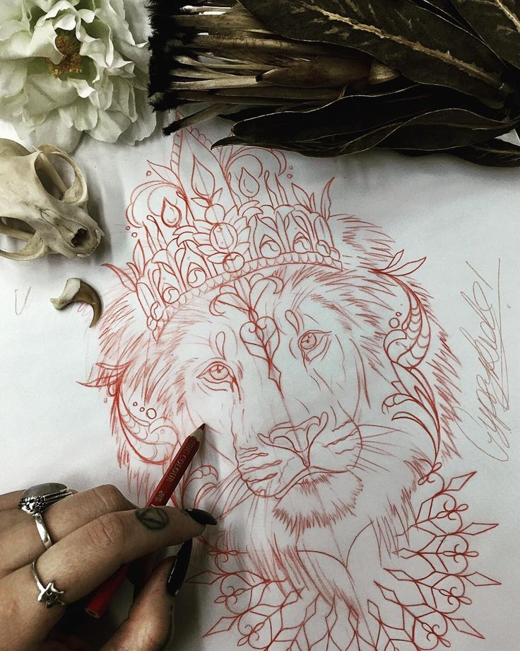 "406 Likes, 9 Comments - CARTER (@gypsykidds) on Instagram: ""Prelim drawing for Anneliese's Dutch lion I did yesterday. The prelim drawings are always my fav!!…"""