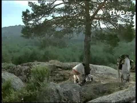 El Ingenioso Hidalgo Don Quijote de la mancha, Capítulo 4