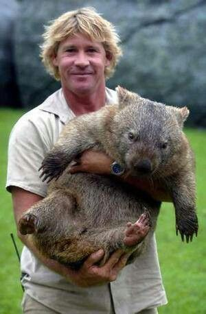 The late great Steve Irwin was extremely passionate about animals x here he is cuddling a Wombat xox