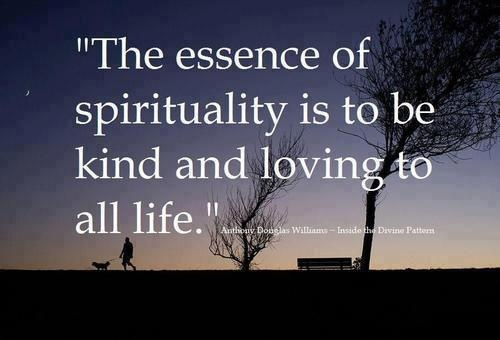 The essence of spirituality is to be kind and loving to all life
