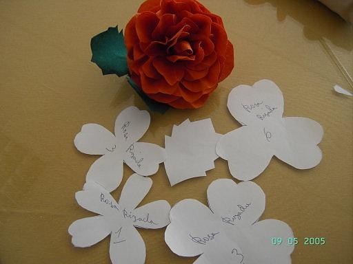 Flores de tela almidonada