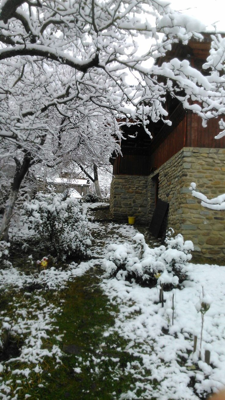 Decembrie 2017,Teișani