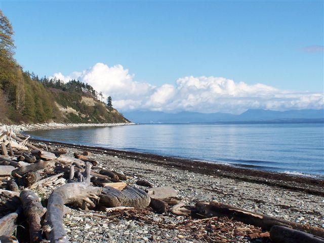 Goose Spit beach, Comox, Vancouver Island. Favourite beach as a kid!