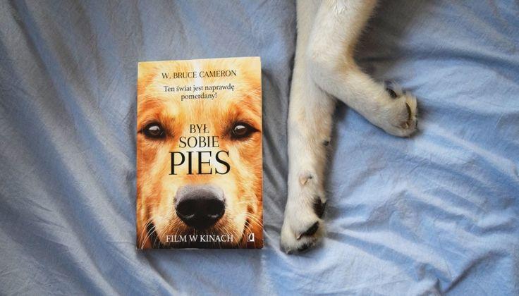 Znalezione obrazy dla zapytania był sobie pies książka