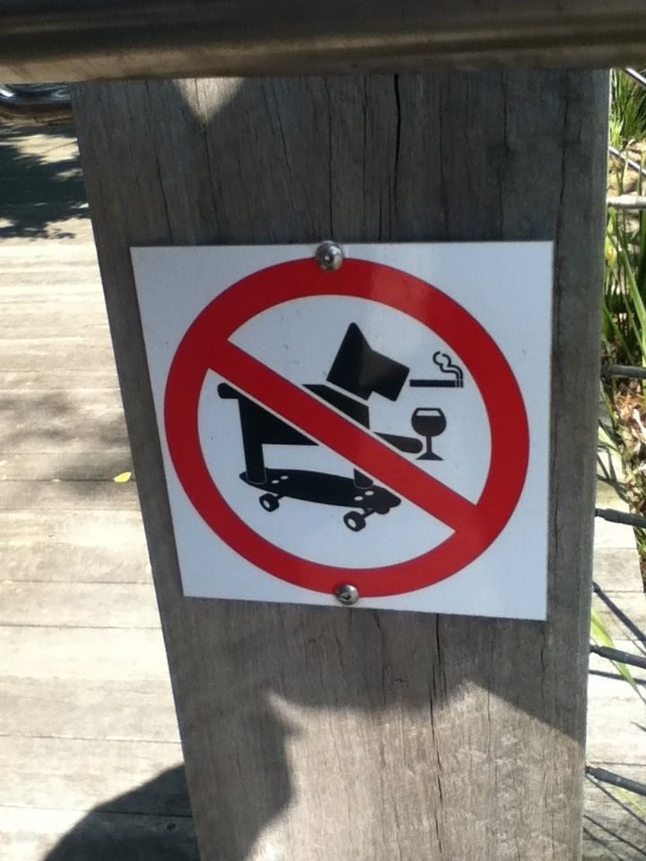 No smoking, drinking, skateboarding dogs please.