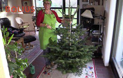 Fru Grøns tips til juletræet