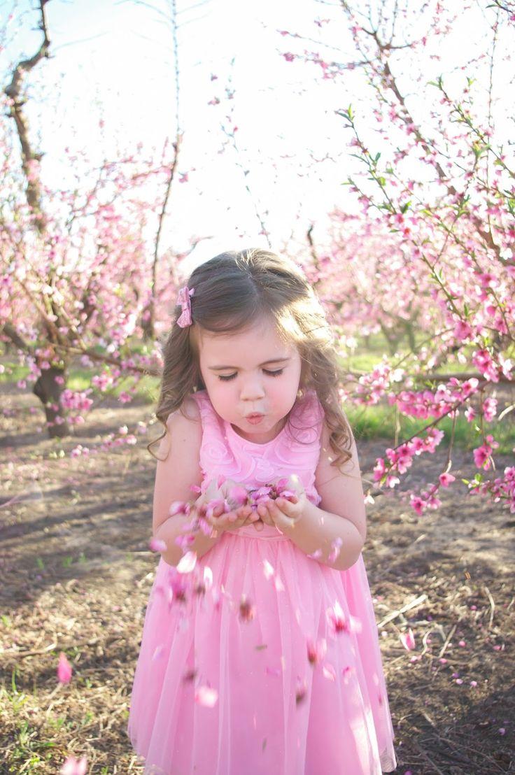 Mejores 42 imágenes de Orchard/Spring Blossom en Pinterest ...