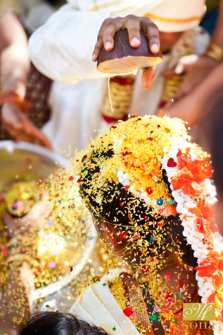 Amazing photo during a recent Indian wedding ceremony in our Mosaic Garden - photo by #BethInsalaco: Beautiful Bridegroom, Indian Weddings, Amazing Photo, Heart Confetti, Mosaics Gardens, Sona Photography, Indian Bride, Botanical Gardens, Wedding Ceremony