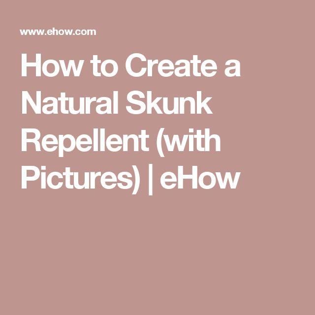 Natural Remedies For Skunk Repellent