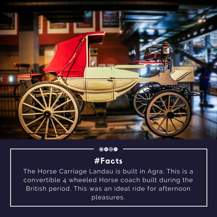 Landau- A Horse Carriage from the 1900s! #horsecarriage #vintagetransport #vintagecollection #transportmuseum