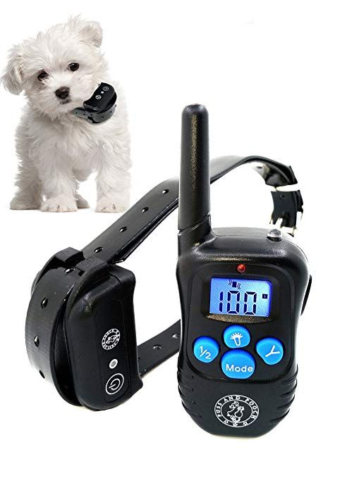 Read Reviews And Buy The Best Dog Training Collars From Top Brands