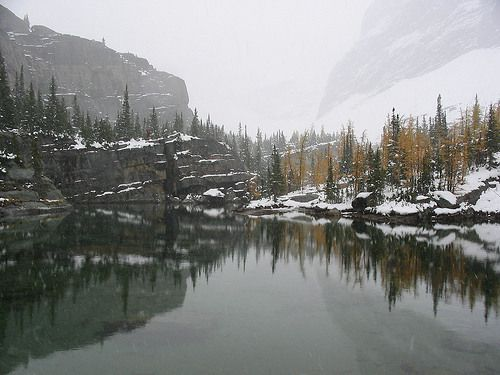 Yoho National Park, Field, BC Fossils, railroads, and waterfalls!