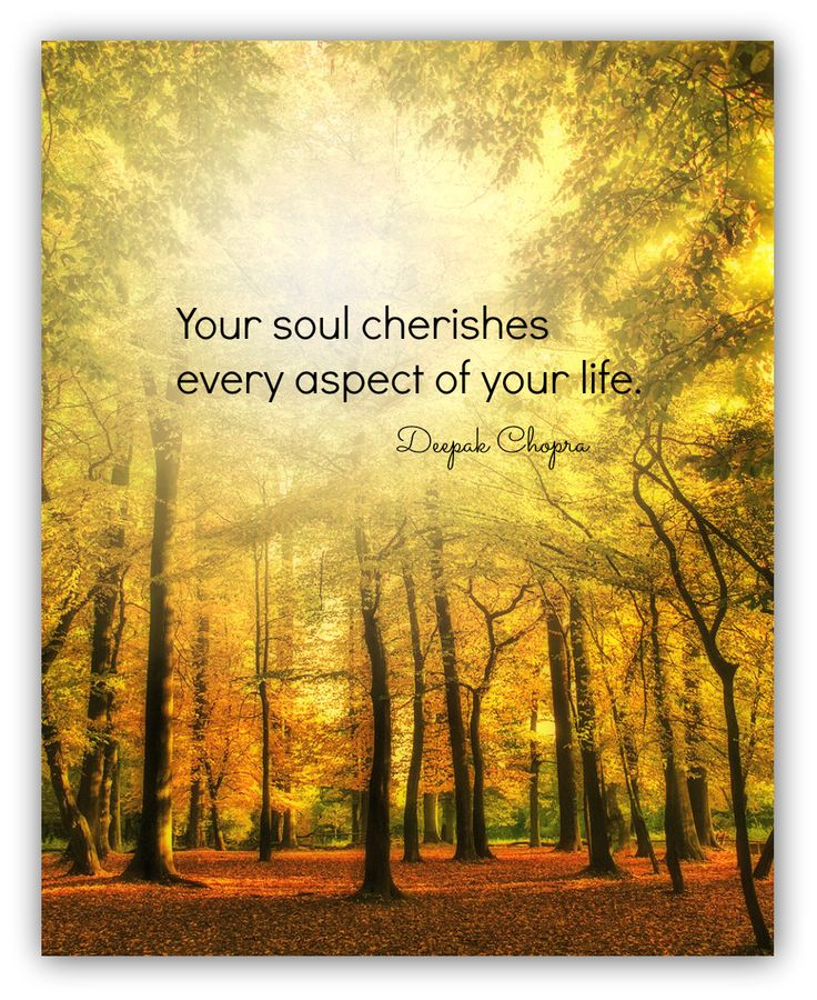 1000+ Images About Deepak Chopra Quotes On Pinterest