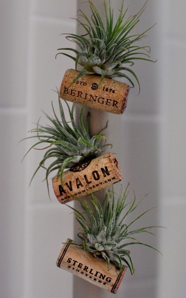 Adorable cork planter magnets!