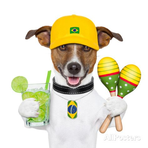 Funny Dog Brazil Posters by Javier Brosch World Cup