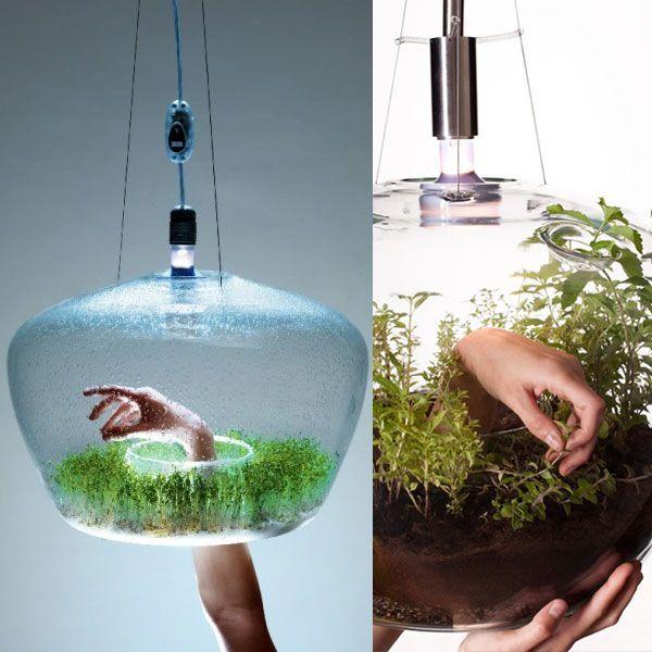 KRISTÝNA MARKVARTOVÁ – glass greenhouse lamp #lamp #lampdesign #lighting #design #industrialdesign #productdesign
