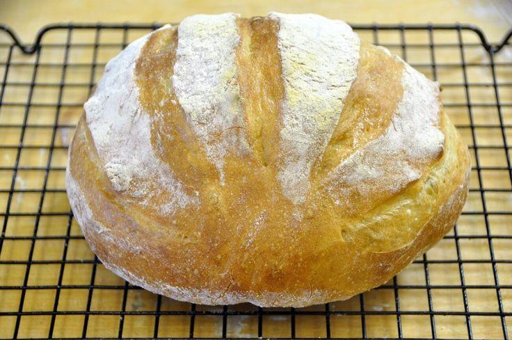 Pane Semplice in 5 Minuti Nel Forno a Legna Duettino - VivaLaFocaccia - Le migliori ricette per il pane e la pizza fatte in casa