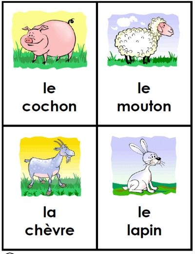 le cochon mouton lapin animal cards for preschool or kindergarten free and printable flashcards