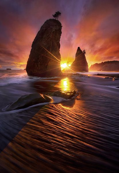"""Fire Light' Olympic Coast, Washington | Marc Adamus"