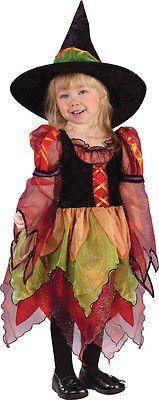 Morris Costumes Girls Fairy Witch Toddler 3T 4T. FW1560