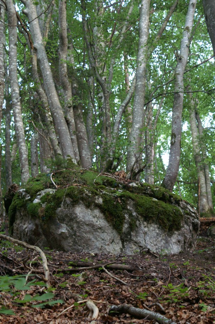 Hoe is het mogelijk op zo'n rots??? Frankrijk.