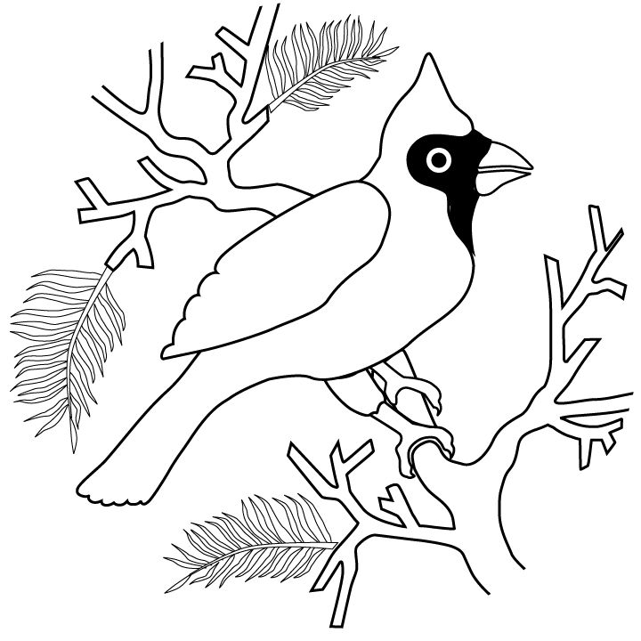 Cardinal coloring pages for kids | Coloring pages ...
