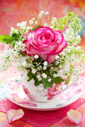 Blumen in Tasse