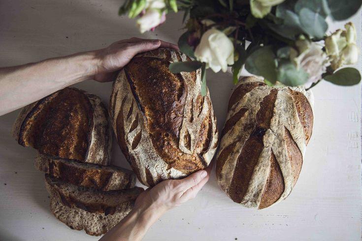 Maškrtnica | o chlebu, kvásku a další pekařské zábavě.