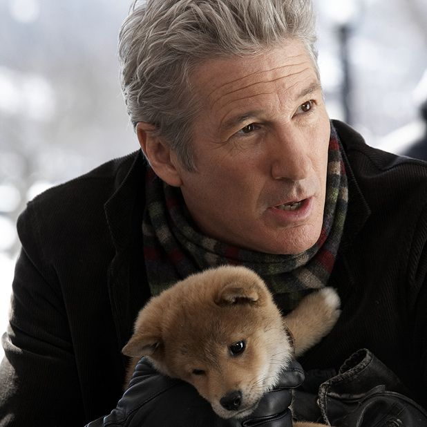 Just watched Hachiko: A dog's tale, omgggggg puppy so cute!